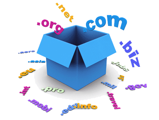 domain hosting hizmeti